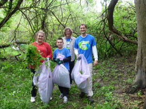 4-23-15-Volunteers pull invasive garlic mustard plants in Detroit's Rouge Park