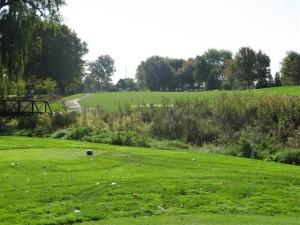 7-16-15-Sylvan Glen wetlands