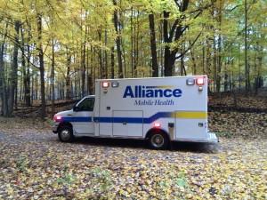 7-18-15-Alliance buggy