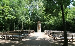 8-5-15-outdoor sanctuary