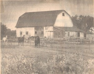 10-5-15-Horse Barn