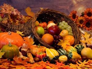 11-26-15-thanksgiving