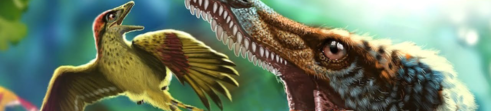 Teas at Two: Paleontology Tea