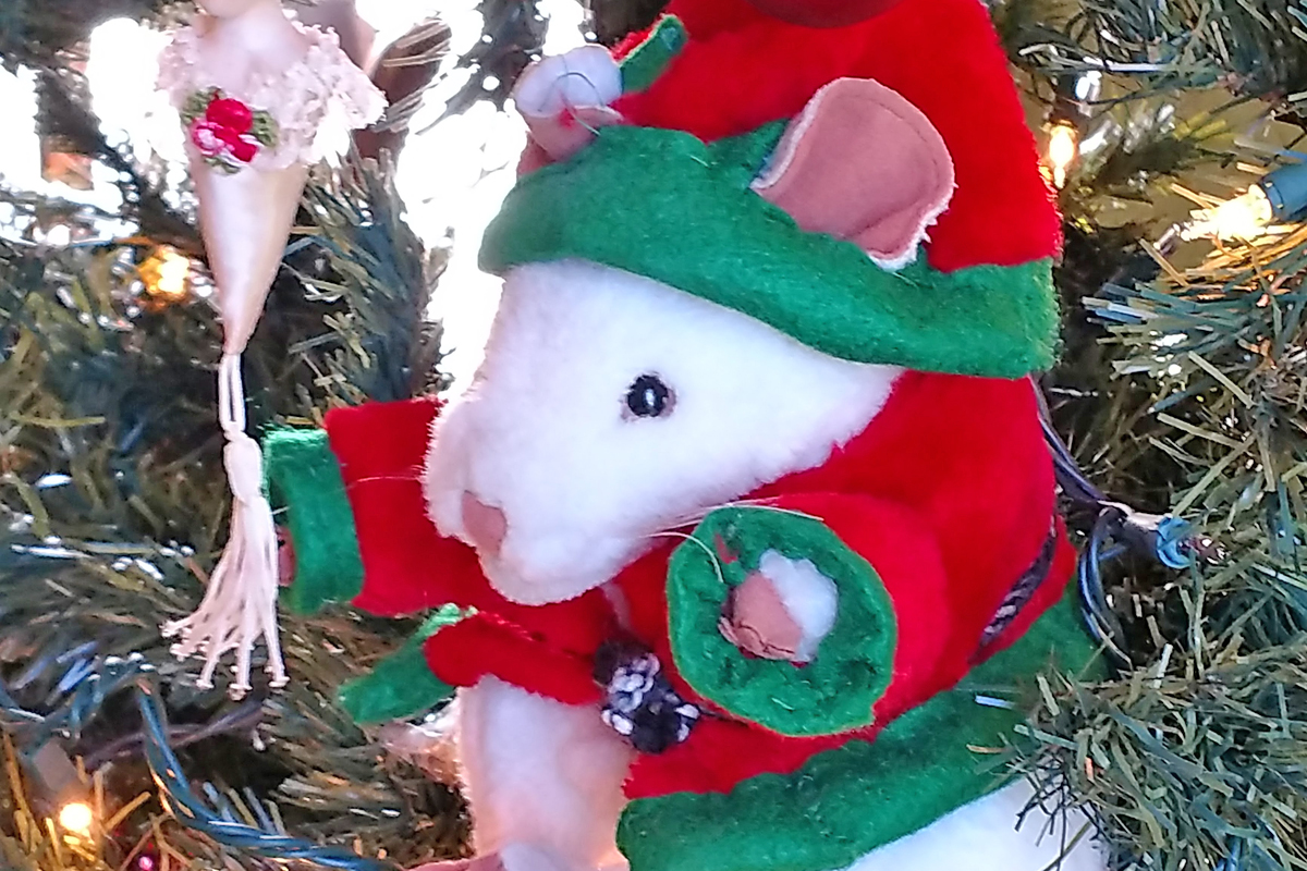 Cheddar, our story time mouse, posing in the Parsonage Christmas tree