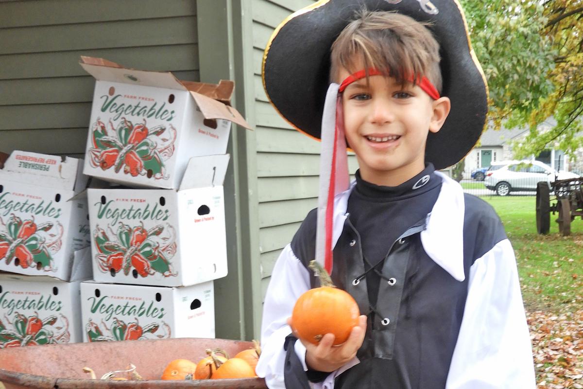 Halloween Picking pumpkins